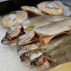 Wet Fish and Seafood